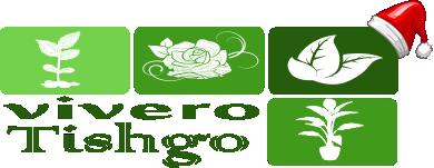 Vivero Tishgo